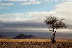 Namibia by  Irca Caplikas
