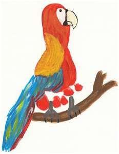 footprint parrot