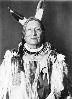Portrait (Front) of Padani-Kokipa-Sni (Not Afraid of Pawnee) in native dress with necklace, possibly snakeskin, and medal. Part of Siouan (Sioux) and Yankton Tribes Native American Warrior, Native American Pictures, Native American Wisdom, Native American Artwork, Native American Beauty, Indian Pictures, Native American Tribes, American Indian Art, Native American History