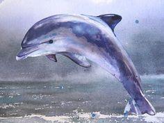 Watercolor Dolphin Tutorial 5 of 5 - free watercolor tutorial #watercolor…