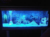 Blauwe aquarium nachtverlichting en dagverlichting met afstandsbediening