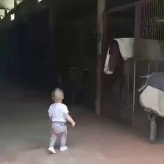 This is so adorable. Little kid sharing morning kisses with his best buds! Funny Cute, Hilarious, Good Morning For Him, Funny Animals, Cute Animals, Animals Beautiful, Morning Kisses, Happy New Week, Happy Friday
