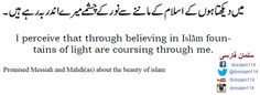Promised Messiah and Mahdi(as) about the beauty of Islam