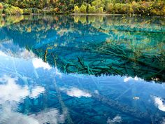 Valle de Jiuzhaigou, China Underwater Forest by rduta, via Flickr