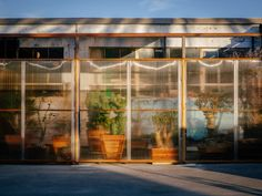 Mesh panels flank either side of the sections to allow air to flow thought and slide open up to allow for different configurations inside. Santa Monica, Polycarbonate Panels, Building Facade, Building Ideas, Large Plants, Cool Landscapes, Cacti And Succulents, Art Design, Interior Design