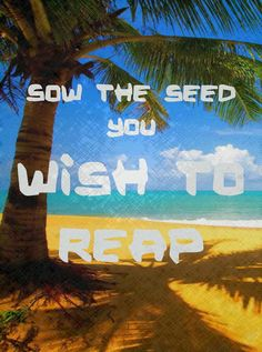 Great reminder! What Seeds Are You Sowing? |