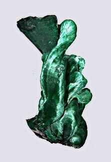 velvet malachite from Shaba, Congo. Amazingly fluid looking, don't think I have ever seen this form of malachite!