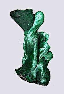 velvet malachite from Shaba, Congo