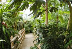 Franklin Park Conservatory - Conservatory