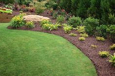 Bermuda grass and drought resistant plants - landscaping