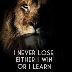 (For sore loosers)--aslan-quotes-lioness-quotes. Aslan Quotes, Lioness Quotes, Leo Quotes, Wisdom Quotes, Poster Quotes, Positive Quotes, Motivational Quotes, Quotes Inspirational, I Never Lose