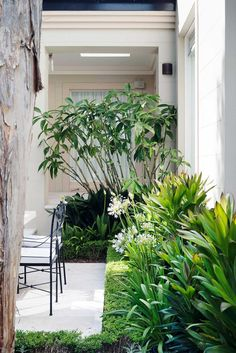 """When Matt Cantwell first saw this rear garden in Sydneys north, it was overgrown and dated. Pebblecrete stepping stones led through a """"1970s-era native rainforest"""" and there was little connection to the house. Once the pebblecrete was removed, this Sydney garden could be rezoned for outdoor living."""