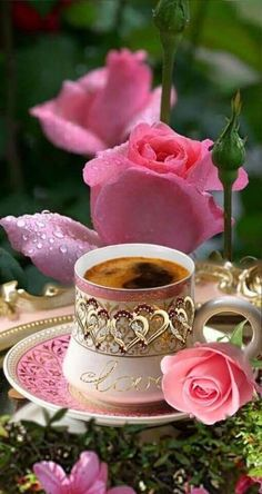 Good Morning Coffee Images, Good Morning Roses, Good Morning Gif, Good Morning Greetings, Morning Images, I Love Coffee, My Coffee, Coffee Flower, Raindrops And Roses