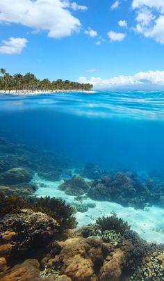 Dominican Republic - Las Terrenas - #junkydotcom