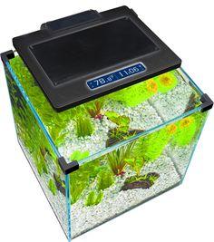 https://i.pinimg.com/236x/7b/32/61/7b32619aad4b7553c1640512bae52f0e--aquarium-led-penn.jpg