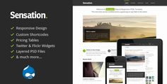 Happy New Year, Wish you all best success in the new Year. We also just released Sensation - Great Responsive Drual Theme, have check it out  http://themeforest.net/item/sensation-responsive-drupal-theme/3725738?ref=tabvn