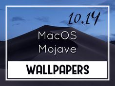 24 September, Mac Os, Desktop Wallpapers, Reading, Desktop Backgrounds, Word Reading, Reading Books, Libros