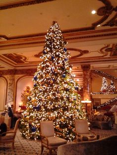 Fairmont Hotel San Francisco - tree lighting and 20 ft gingerbread house at the holidays