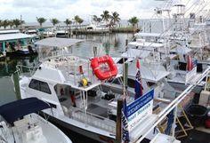 Islamorada Dive Center is ready for the upcoming 2015 Reef Crawl in Islamorada and Key Largo. Vip Card, Kayak Paddle, Florida Keys, Snorkeling, Kayaking, Diving, Key Largo, Scuba Diving