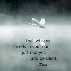 ~Rumi ..*