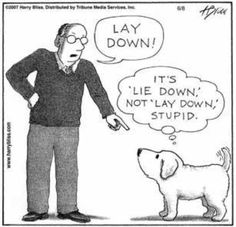 """I'd like to dedicate this pin to my boyfriend, who kindly reminds me every time i tell his dog Zena to """"Lay down"""" that it's """"Lie down"""". I'm sorry, I'm from the South, and grammar is a selective option :P"""