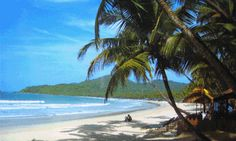 This amazing destination has a special place in my heart Goa India, Beach Images, Beautiful Beaches, Beautiful Scenery, Travel And Leisure, Travel Goals, Amazing Destinations, Incredible India, Places Around The World