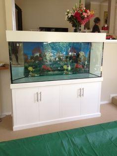 Brand New Custom Made Glass Tank 6x2x2 Foot Tank
