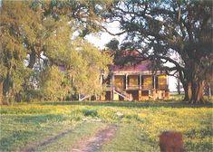Louisiana plantation homes site photos......Laura Plantation before restoration , Vacherie , Louisiana