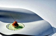 Design porcelain plates with unusual fluid shapes Food Presentation, Food Design, Porcelain, Plates, Japan, Interior Design, Ethnic Recipes, Licence Plates, Nest Design