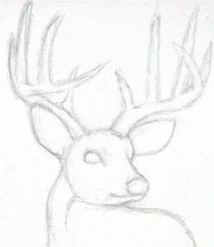 Realistic Drawing Techniques how to draw a deer head, buck, dear head step 3 Cute Drawings, Drawing Sketches, Pencil Drawings, Easy Animal Drawings, Sketching, Easy Realistic Drawings, Drawing Ideas, Pencil Drawing Tutorials, Drawing Guide