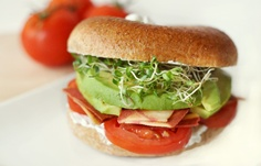 Grain Bagels w/ Tomatoes, Cream Cheese, Avocados & Alfalfa