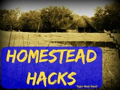 Ants are making their way into our home, I don't want to lay out poison. What's a crunchy-green country girl to do?? Check this Homestead Hack! #TaylorMadeRanch
