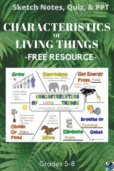 Teach the characteristics of living things with this free resource that includes visual notes, a slide show, and quiz. Living things science activity for grades 5th Grade Science Experiments, Science Topics, Science Student, Science Resources, Teaching Activities, Science Lessons, Life Science, Elementary Science Classroom, Middle School Science