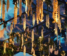 We are excited to bring you even more dreamy experiences this season! Destination Wedding, Wedding Venues, Fairy Lights Wedding, Floral Wedding Decorations, Outdoor Wedding Inspiration, Greece Wedding, Ceiling Decor, Elegant Wedding, Weddings
