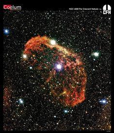 NGC 6888 The Crescent Nefula by CFH [Canada-France-Hawaii Telescope]