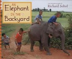 Great list of books that feature Asian elephants, highly regarded in Asian culture and currently endangered. These are both fiction (stories and folktales) and nonfiction books that feature these majestic animals. Elephants For Kids, Elephants Never Forget, Fiction Stories, Fiction And Nonfiction, Kids Around The World, Asian Elephant, Majestic Animals, Chapter Books, Lessons For Kids