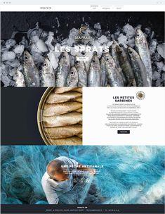 Sea Frais | Fresh Sardines French Websites, France, Sea, Fresh, Early French, Ocean
