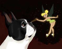 Boston Terrier and Tinkerbell- Boston Terrier Dog Art