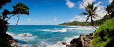 Caribbean vakantie: Caribbean vakantie 2014