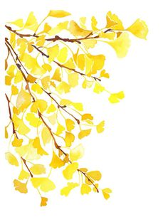 Handmade Watercolor Autumn Fall Yellow Ginkgo by YaoChengDesign, $20.00