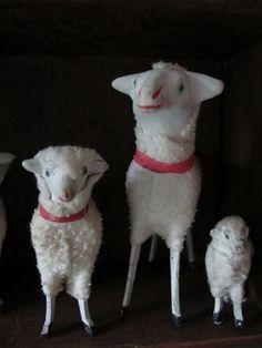 Putz sheep.
