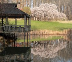 8. Brookside Gardens, Wheaton
