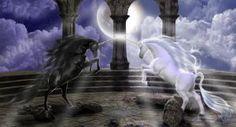 Black & White - Fantasy Wallpaper ID 2016708 - Desktop Nexus Abstract Unicorn And Fairies, Unicorn Fantasy, Unicorns And Mermaids, 3d Fantasy, Unicorn Art, Fantasy World, Rainbow Unicorn, Fantasy Creatures, Mythical Creatures