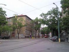 Gorilla scandal - Wikipedia Scandal, Street View