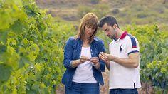 La última generación de la familia Martínez Alesanco en las viñas http://blogs.periodistadigital.com/elbuenvivir.php/2017/04/19/p398633#more398633