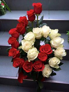 Red And White Roses For You Kırmızı ve beyaz güller senin için Valentine Flower Arrangements, Church Flower Arrangements, Rose Arrangements, Church Flowers, Beautiful Flower Arrangements, Funeral Flowers, Beautiful Flowers, Ikebana, Deco Floral
