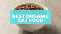 Best Organic Cat Food Organic Cat Food, Cat Diet, Dry Cat Food, Food Items, Grain Free, Nutrition, Eat, Natural, Healthy