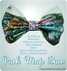 Magical Ribbons - Park Map Bow