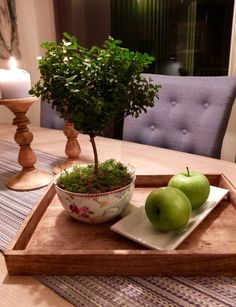 Myrsine, noe så yndig! – fleurs Bonsai, Serving Bowls, Tableware, Plants, Flowers, Mixing Bowls, Dinnerware, Bonsai Trees, Bowls