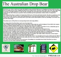 Welcome to Straya – An Oi Oi Oi collection of funnies | PMSLweb
